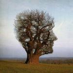 H ψυχοθεραπεία είναι πολύ πιο πλούσια, και δυναμική διαδικασία από ό,τι μια απλή παροχή βοήθειας για την επίλυση συγκεκριμένων προβλημάτων.
