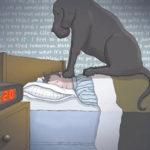 Ο μαύρος σκύλος