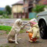 Το δέρμα των ανθρώπων και των ζώων είναι γεμάτο νευρικές απολήξεις που αντιδρούν στα διάφορα ευχάριστα και δυσάρεστα ερεθίσματα.