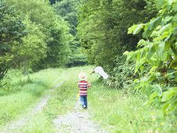 Εισάγοντας στοιχεία «πρασίνου» στον εξωτερικό χώρο, τα παιδιά έχουνε περισσότερες επιλογές για δραστηριότητες, ανάλογα µε τις ανάγκες τους και τα ενδιαφέροντά τους.