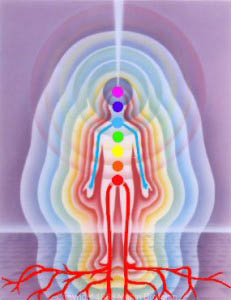 Body Mirror System